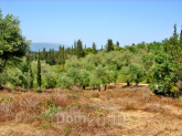 For sale:  land - Kerkyra (Corfu island) (4119-032) | Dom2000.com
